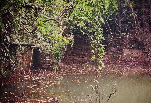 Keppel Hill Reservoir