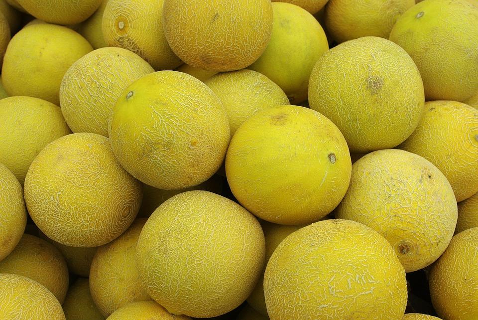 melon-1339889_960_720[1]