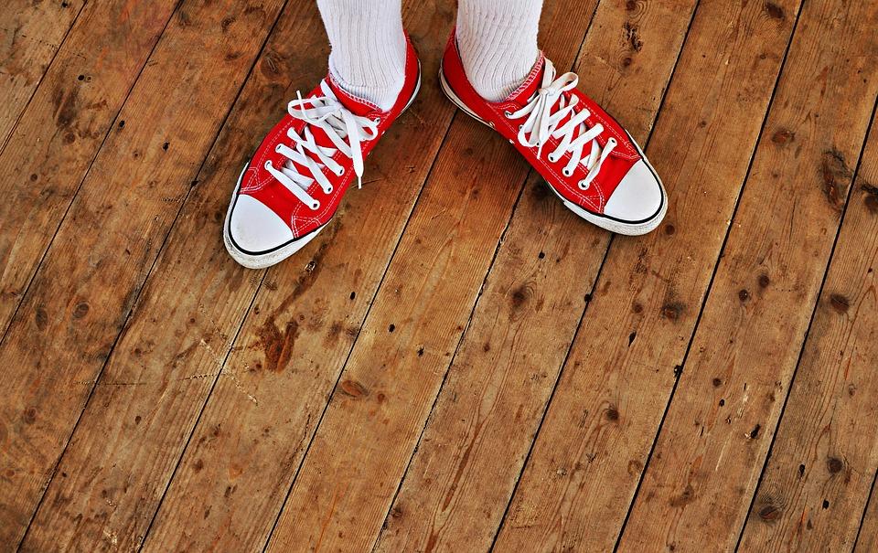sneaker-1441954_960_720[1]