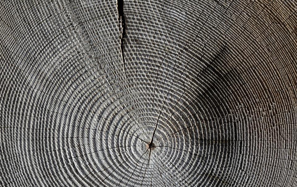 wood-618673_960_720[1]