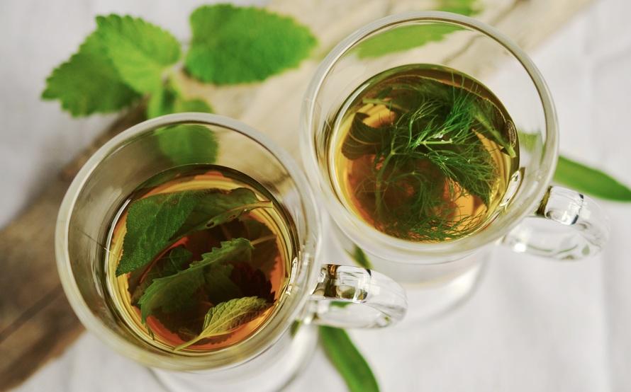 mengatasi rambut rontok dengan teh hijau