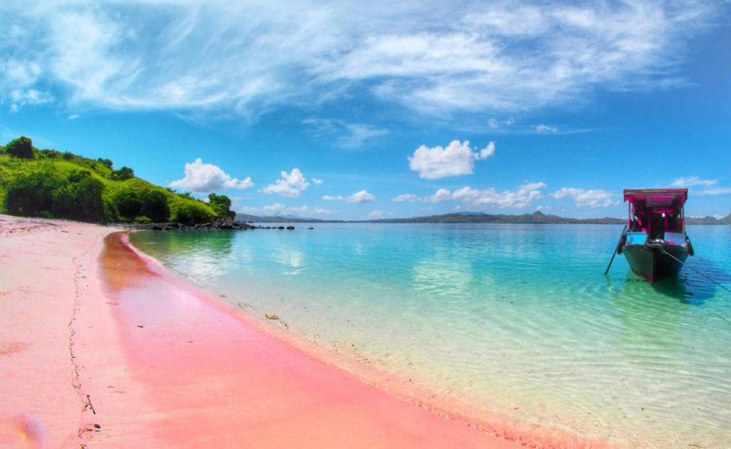pantai pink di dunia