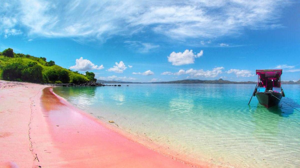 Sekali Seumur Hidup! 7 Pantai Pink di Dunia Ini Wajib Dikunjungi