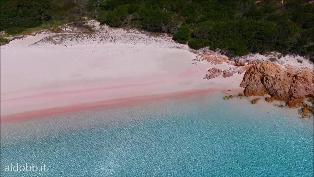 budelli beach pantai pink