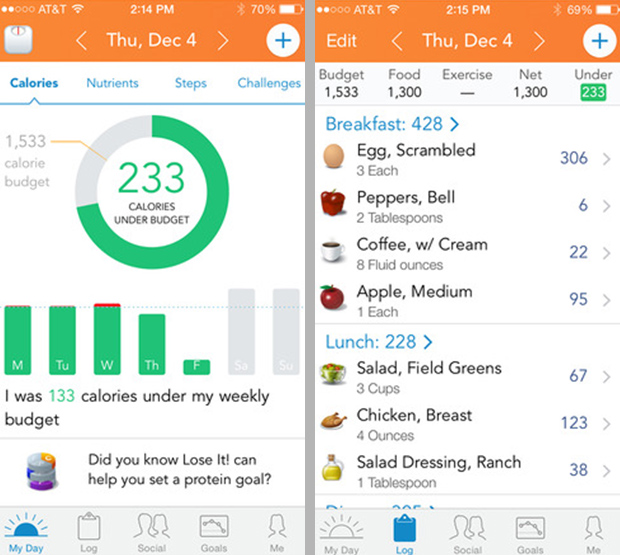 Diet tracker atau Food Diary