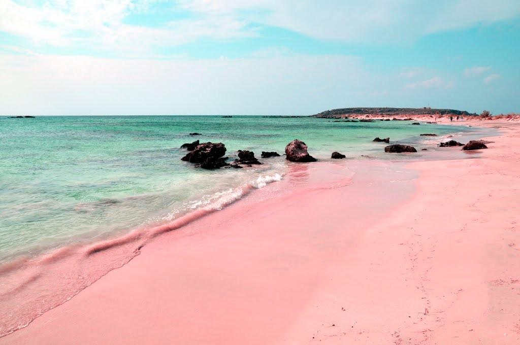 harbour island bahama pantai pink