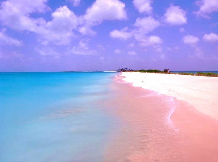 pantai barbuda pantai pink di dunia