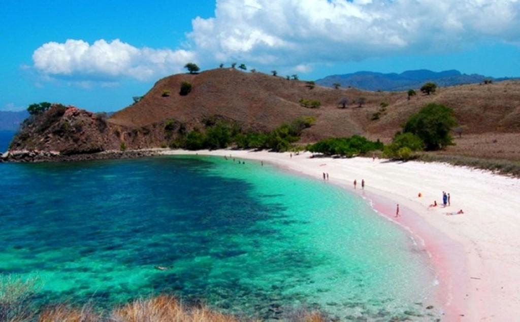 pantai tangsi pantai pink di indonesia