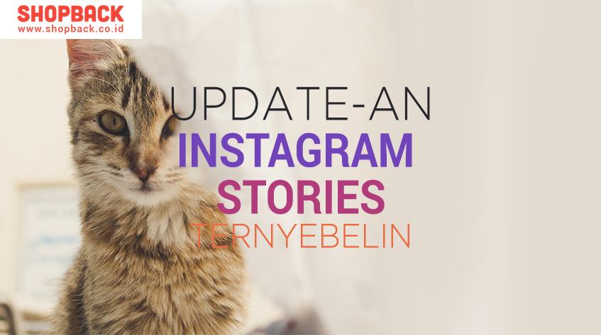 updatean insta stories logo