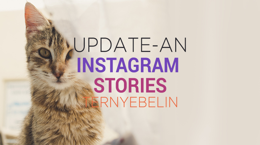 12 Jenis Updatean Instagram Stories yang Suka Bikin Kesel