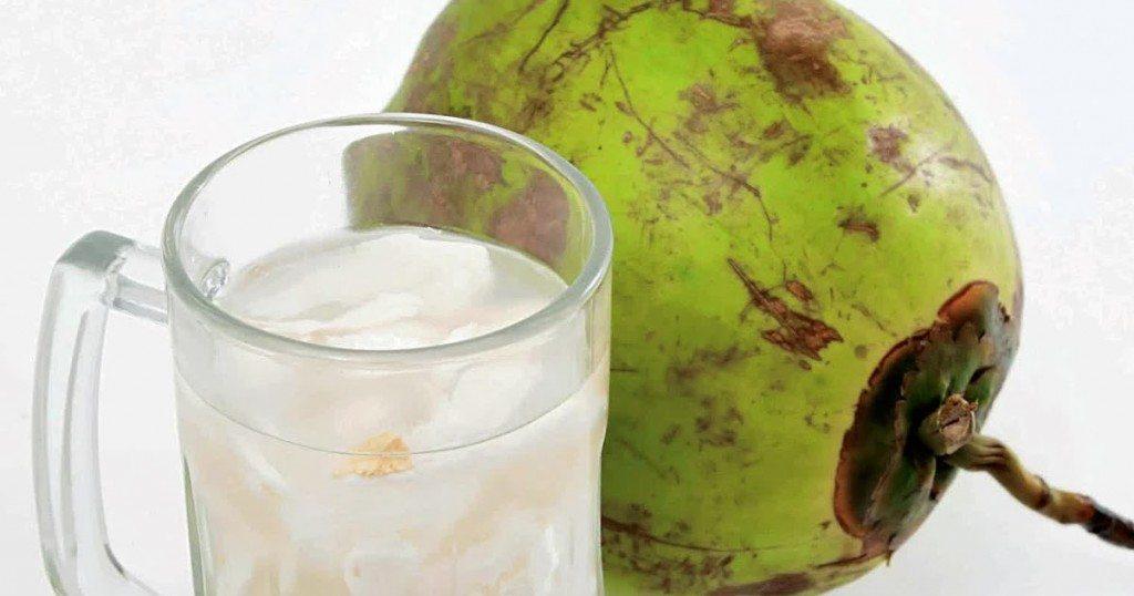 air kelapa cegah dehidrasi