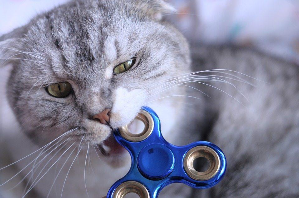 Belum Beli Spinner Kekinian? Yuk Hunting Dengan Cara Ini