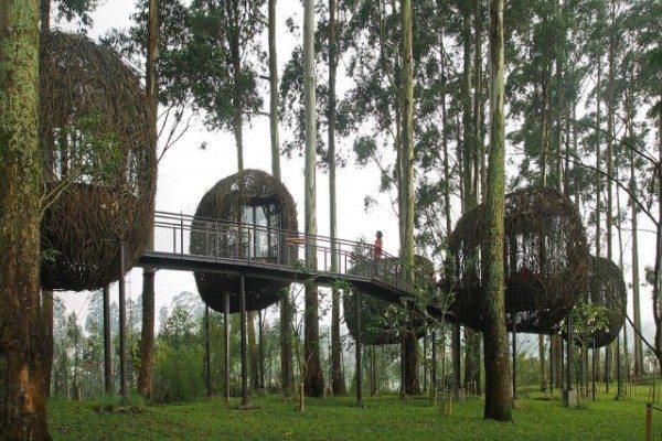 kafe alam di Bandung