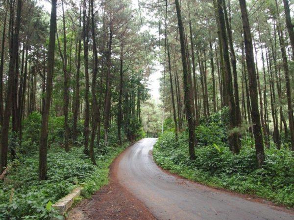 lokasi wisata keluarga di Bogor