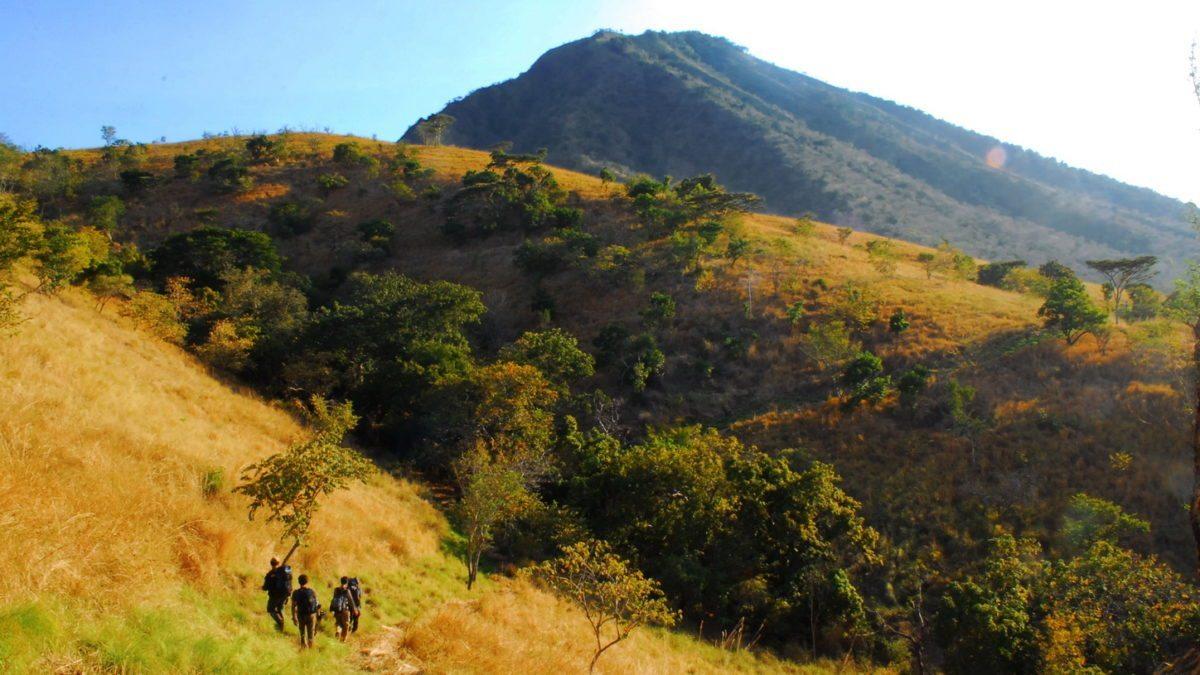7 Tempat Wisata Di Banyuwangi Dengan Pemandangan Alam Terbaik