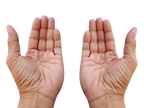 cara membaca garis tangan