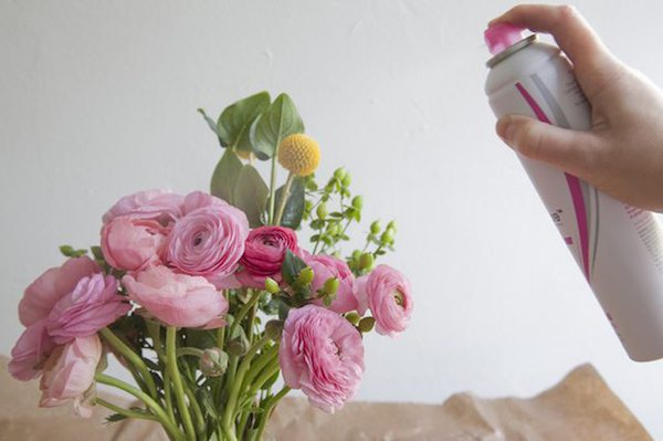 cara mengawetkan bunga