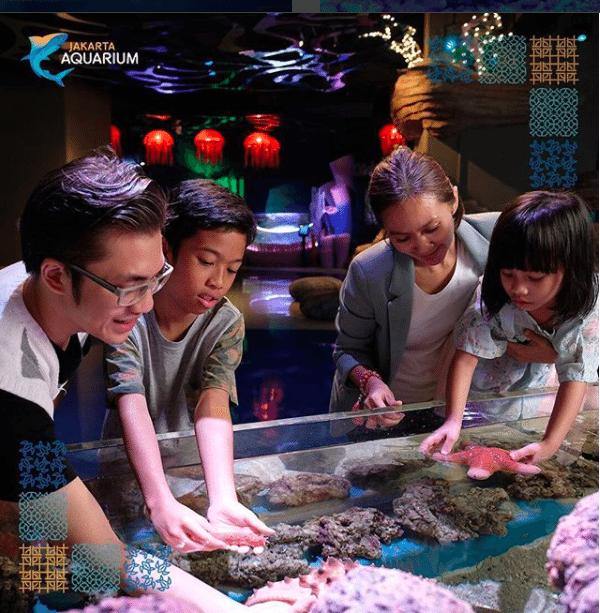 touch pool Jakarta Aquarium