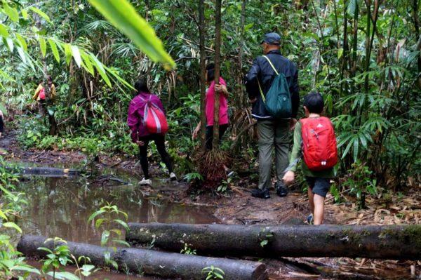 Travel Tanjung Puting