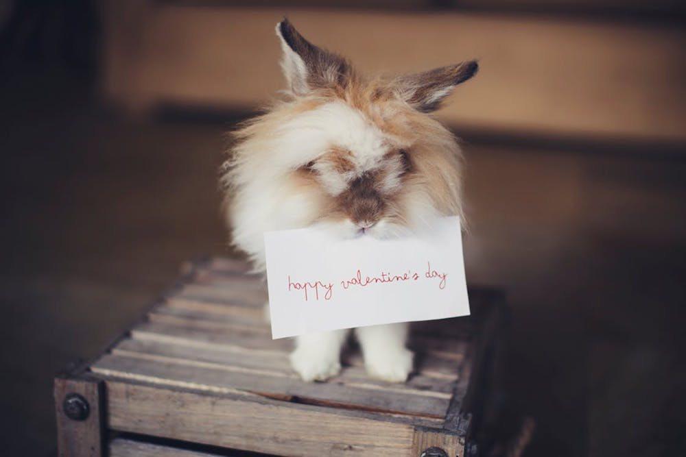 Awas! Ini Dia 8 Tempat Terlarang Buat Para Jomblo Saat Valentine