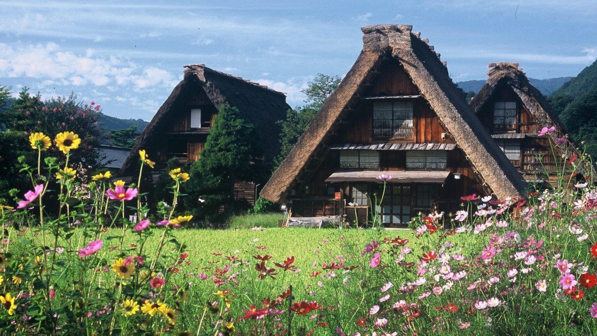 Ini 10 Wisata di Jepang Antimainstream yang Perlu Dikunjungi