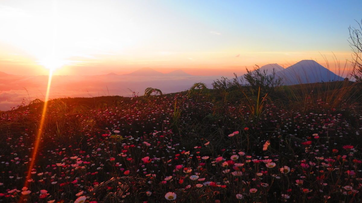 Ini 7 Gunung Favorit Pendaki Pemula di Pulau Jawa