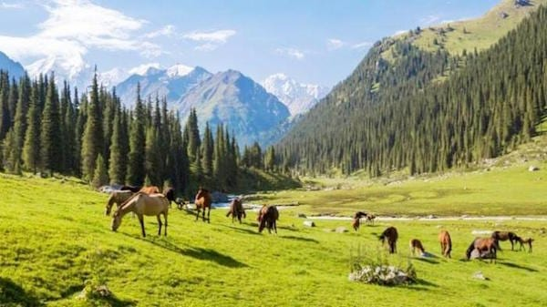 kirgizstan negara bebas visa