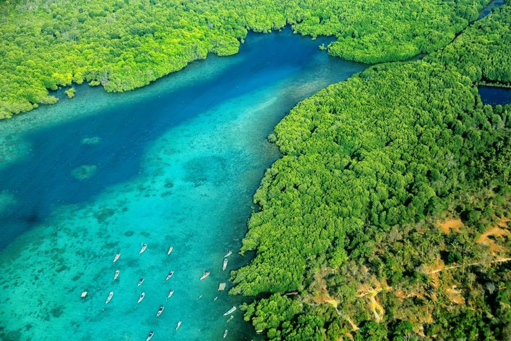 Lokasi Snorkeling yang Ramah untuk Pemula