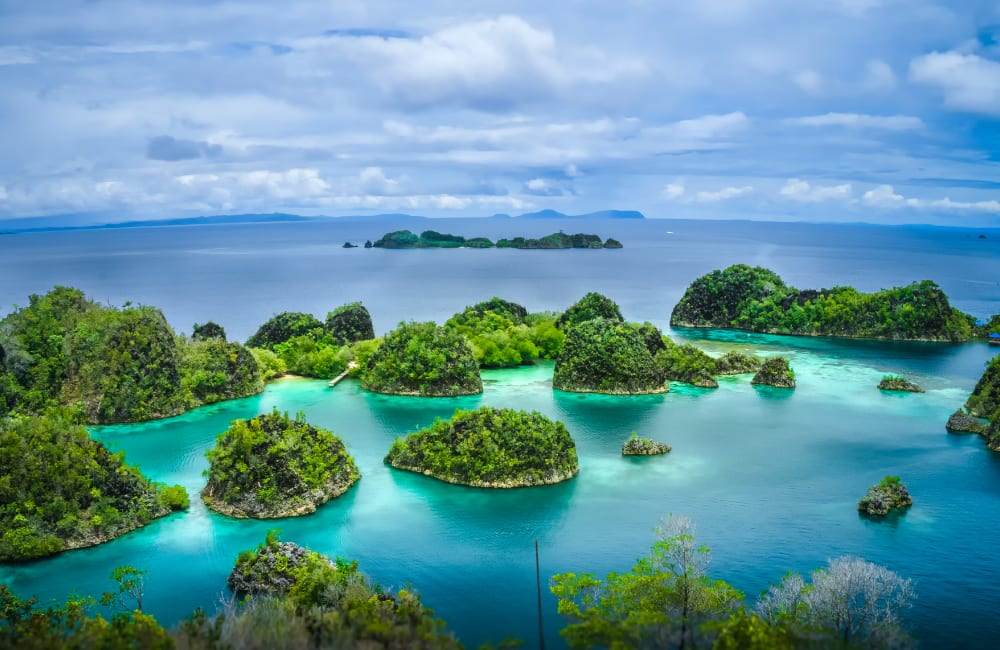 AirAsia rayakan angkut 600 juta penumpang dengan promo Kursi Gratis