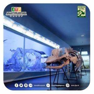 Galeri Fosil