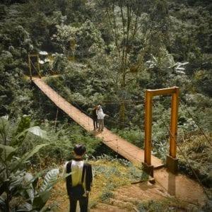 Taman Hutan Raya