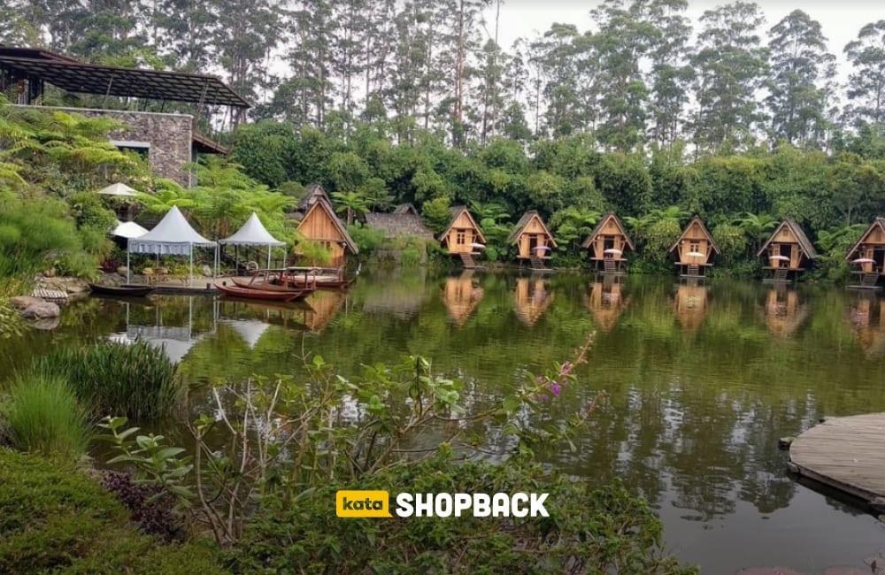 Ranca Upas, Ciwidey: Tempat Wisata yang Keren untuk Berkemah
