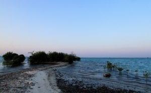 Tiket Masuk ke Pulau Pari dan Rute untuk Menuju Lokasi