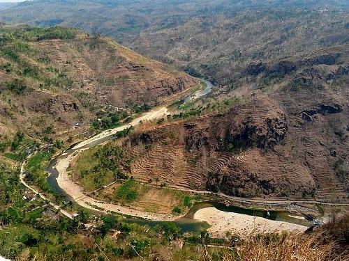 "Saksikan Langsung ""Hutan Amazon"" Ala Yogyakarta!"