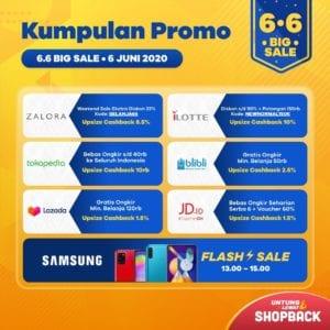 6.6 ShopBack