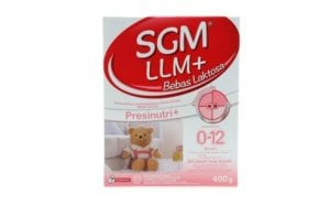 SGM LLM+
