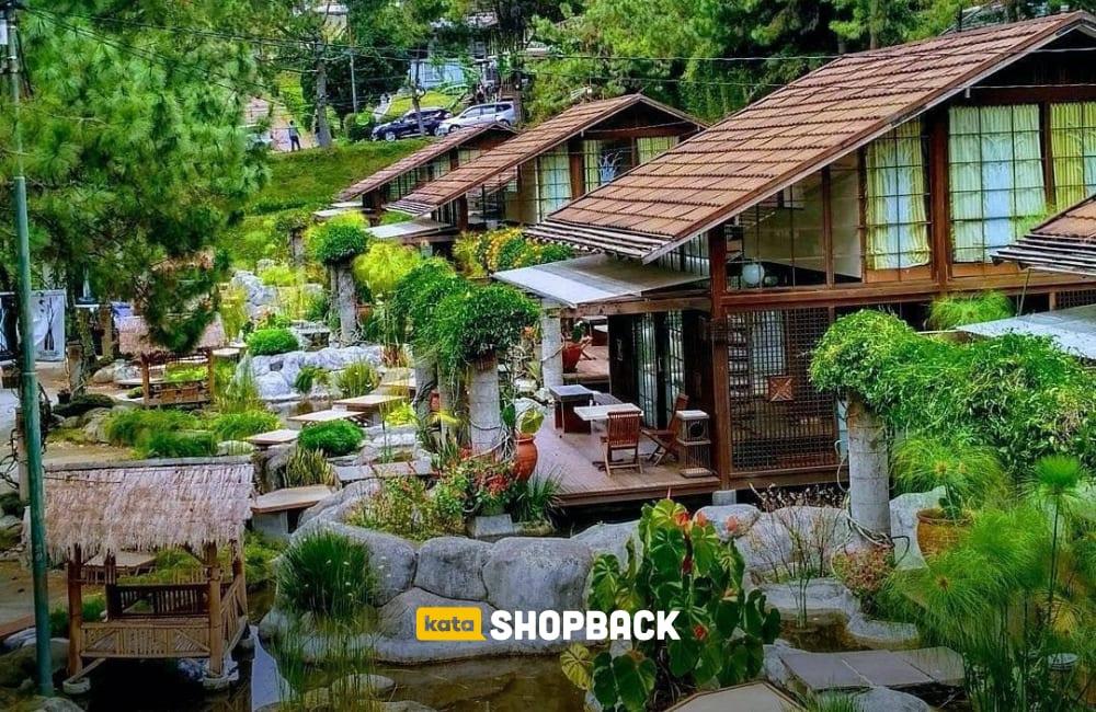 Hotel bernuansa Hutan