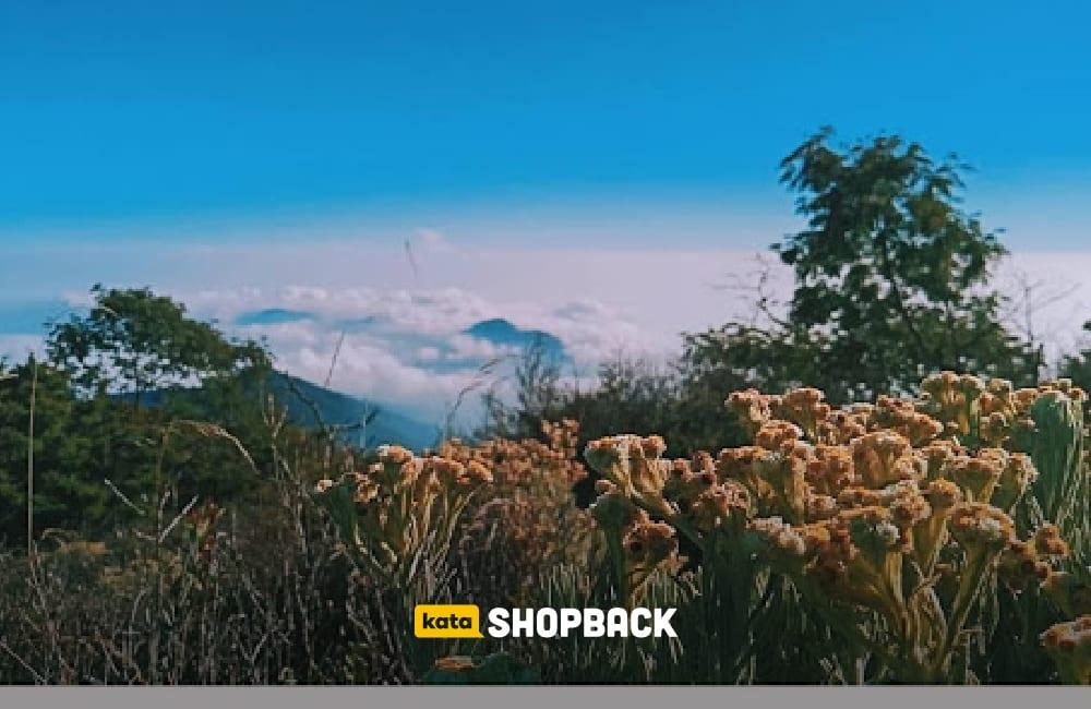 5 Wisata Alam Dekat Jakarta Ini Siap Membuat Liburanmu Makin Seru dan Bermakna