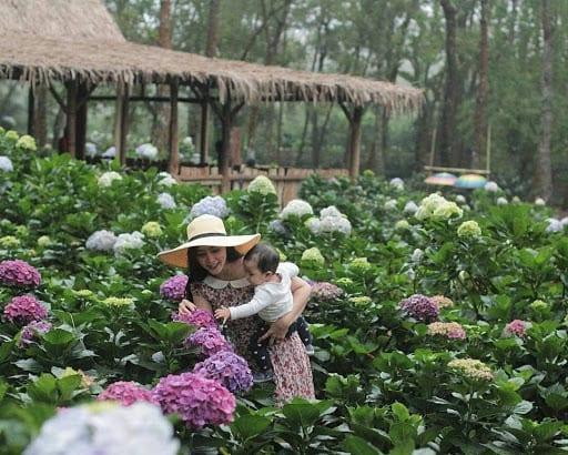 wisata taman bunga