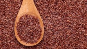 jenis beras