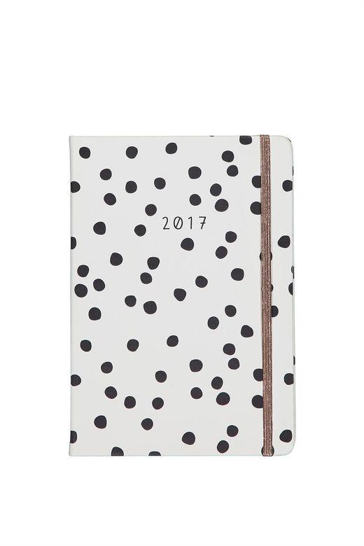 2017 A5 Daily Buffalo Diary larger size diary