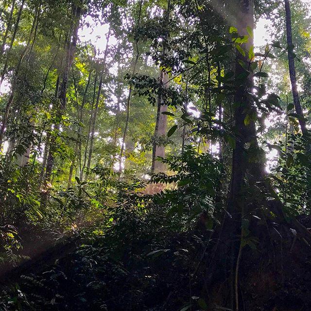 Bukit Lagong