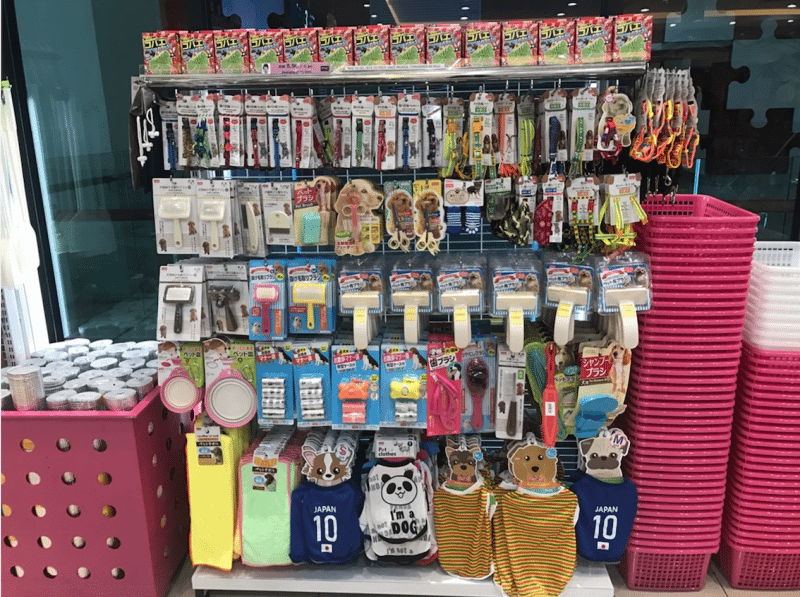 display of pet accessories