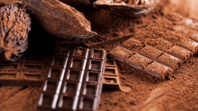 Imported Belgian Chocolate