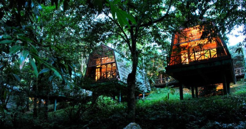 The cabin stays at Tabin Wildlife Resort