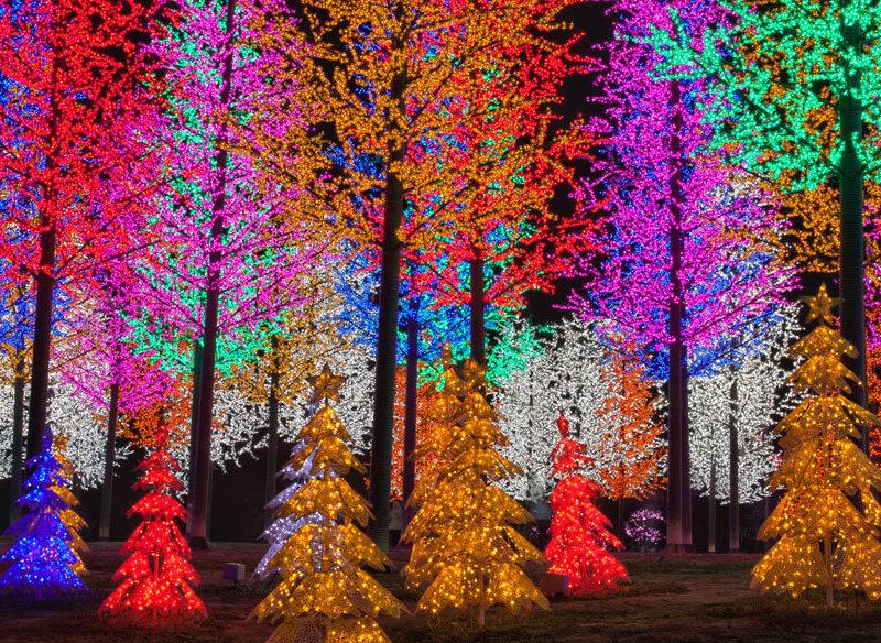 Neon trees at i-City, Shah Alam, Selangor