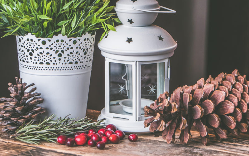 Christmas themed decor with pine, red seeds, plant and candle holder