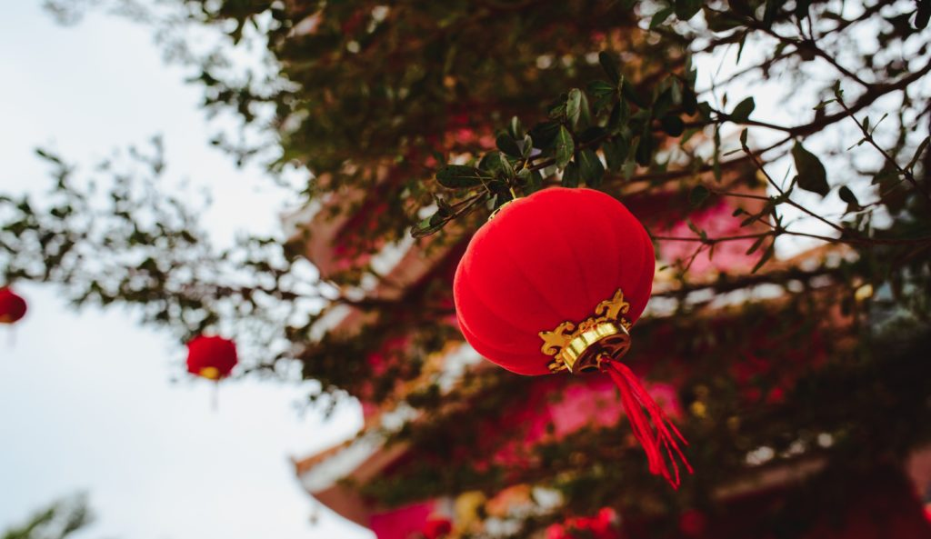 Red lantern hanging on a tree with the pagoda tower in the background
