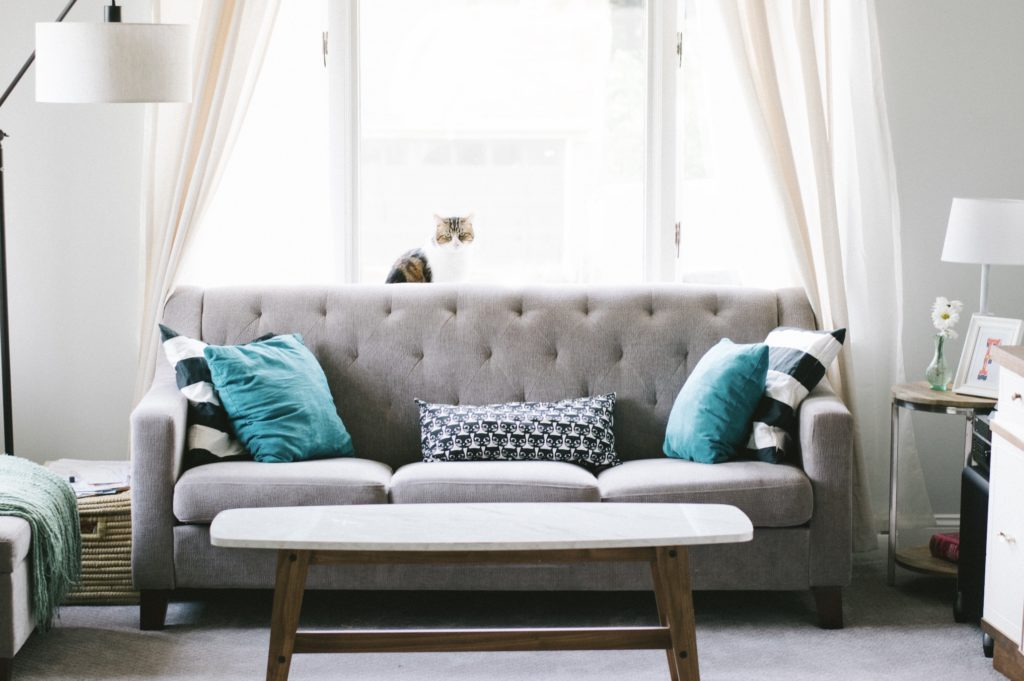 grey sofa living room with blue cushions