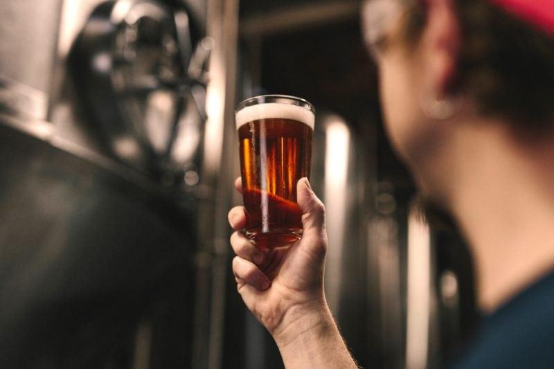 elevate beer
